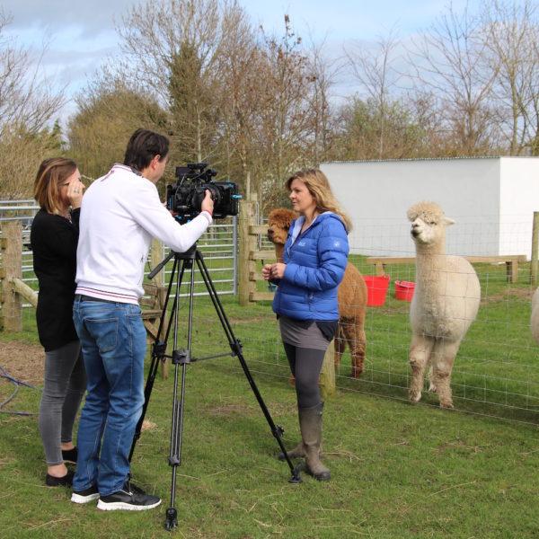 Fides Media filming for BT